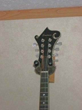 Eastman 615 mandolin headstock