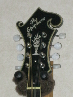 Epiphone - MM-50 headstock