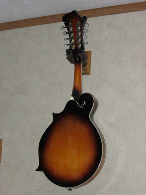 Savanna F-style mandolin back