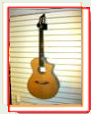 Breedlove N250/CR